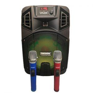 Loa kẹo kéo karaoke bluetooth Temeisheng SL 12-23 - Hàng nhập khẩu
