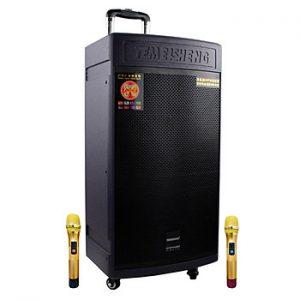 Loa kẹo kéo karaoke bluetooth Temeisheng GD1508 - Hàng nhập khẩu