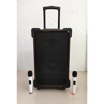 Loa vali kẹo kéo karaoke ronamax mt12 lo gỗ 3 tấc kèm 2micro karaoke