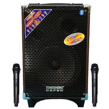 Loa kẹo kéo karaoke bluetooth Temeisheng Q8S - Hàng nhập khẩu