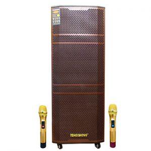 Loa kẹo kéo karaoke bluetooth Temeisheng GD 215-12 - Hàng nhập khẩu