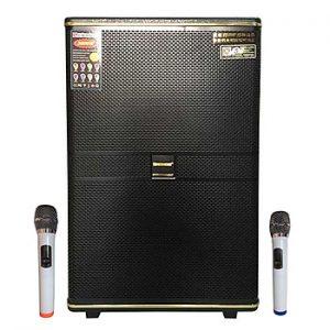 Loa kẹo kéo karaoke bluetooth Temeisheng QX1530 - Hàng nhập khẩu