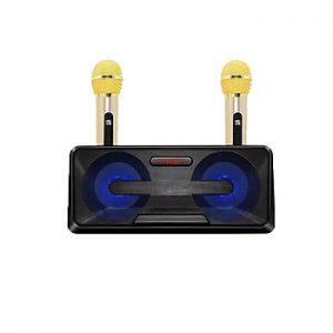 Loa Karaoke SDRD SD-301 kèm 2 mic không dây (giao màu ngẫu nhiên) - Hàng nhập khẩu