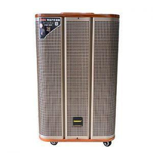 Loa kẹo kéo karaoke bluetooth Temeisheng QX-153 - Hàng nhập khẩu
